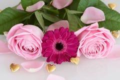 Roze rozen en gerberabloem met gouden harten Royalty-vrije Stock Foto's