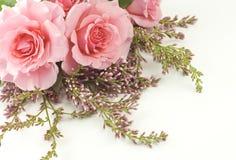 Roze Rozen en Lilac Witte Achtergrond Royalty-vrije Stock Afbeeldingen