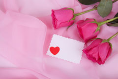 Roze rozen inzake roze kwestie Royalty-vrije Stock Foto