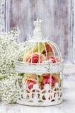 Roze rozen in mooie uitstekende birdcage Royalty-vrije Stock Foto's