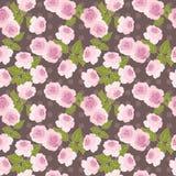 Roze rozen naadloos patroon op bruine achtergrond Royalty-vrije Stock Afbeeldingen