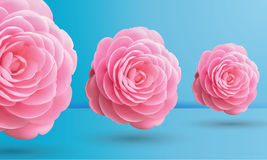Roze rozen op blauwe achtergrond, vectorillustratie Stock Afbeeldingen