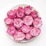 Roze rozen op een plaat op witte achtergrond Vlak leg royalty-vrije stock foto's