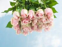 Roze rozen op een spiegel. Royalty-vrije Stock Afbeelding
