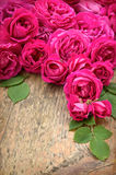 Roze rozen op houten achtergrond Stock Afbeeldingen
