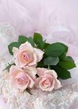 Roze rozen op huwelijkskant (exemplaarruimte) Royalty-vrije Stock Afbeeldingen