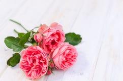Roze rozen over witte houten raad De dag van de moeder of van Valentine stock foto