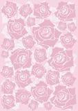 Roze rozenachtergrond Royalty-vrije Stock Foto