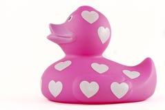 Roze rubber ducky Stock Afbeelding