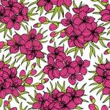 Roze sakura en groen bladeren naadloos patroon Stock Afbeelding