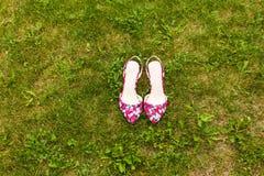 Roze schoenen op het gras Stock Foto's