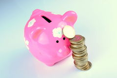 Roze spaarvarken met euro muntstukken, zachte schaduwen Stock Afbeeldingen