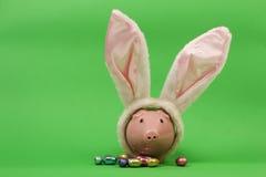 Roze spaarvarken met witte konijnenoren en chocoladepaaseieren op groene achtergrond Royalty-vrije Stock Foto's