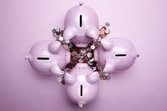 Roze spaarvarkens stock foto