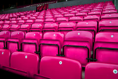 Roze stoelen Stock Afbeeldingen