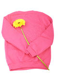 Roze sweater Stock Fotografie