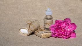 Roze tederheid Royalty-vrije Stock Fotografie