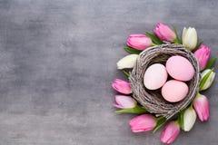 Roze tulp met roze eierennest op een grijze achtergrond De groetenkaart van Pasen stock foto