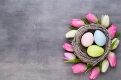 Roze tulp met roze eierennest op een grijze achtergrond Pasen-gree stock afbeeldingen