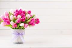 Roze tulp op de witte achtergrond De achtergrond van Pasen stock afbeelding