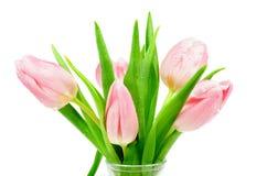 Roze Tulpen Stock Foto's
