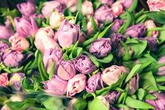 Roze tulpen in een mandclose-up Royalty-vrije Stock Foto's