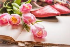 Roze tulpen en leeg boek met vrouwen` s schoenen over witte houten Royalty-vrije Stock Foto