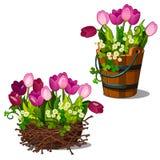 Roze tulpen in houten emmer en nest stock illustratie