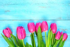 Roze tulpen op houten blauwe achtergrond Conceptievakantie, 8 Maart, Moeder` s Dag Vlak leg en kopieer ruimte Royalty-vrije Stock Foto's