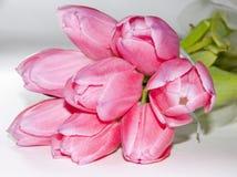 Roze tulpenboeket royalty-vrije stock afbeeldingen
