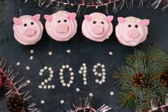 Roze varken cupcakes - eigengemaakte die cupcakes met eiwitroom en heemst wordt verfraaid gaven grappige piggies gestalte royalty-vrije stock foto's