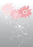 Roze vectorbloemen Stock Foto's