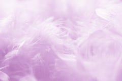 Roze Verenachtergrond - Voorraadfoto's Royalty-vrije Stock Afbeeldingen