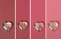 Roze verfspaander stock foto's