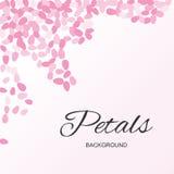 Roze Vliegende Bloemblaadjesachtergrond Royalty-vrije Stock Afbeelding