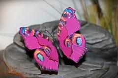 Roze vlinder Stock Afbeelding