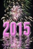 2015, roze vuurwerk Stock Afbeelding