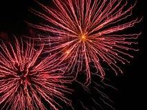 Roze vuurwerk Royalty-vrije Stock Foto's