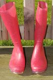 Roze wellies Royalty-vrije Stock Afbeelding