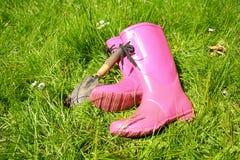 Roze wellingtons in de tuin van de Lente Stock Afbeelding