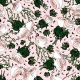 Roze Wit en Rozen vector illustratie