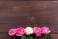 Roze, Witte en Rode Rozen Stock Foto