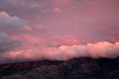 Roze wolken die de bergen van Catalina verlengen bij zonsopgang in Tucson, Arizona stock foto