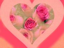 Roze y verde Imagenes de archivo