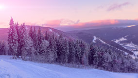 Roze zonsondergang over de bossen van de Karpatische Bergen in de Oekraïne Horizontale foto Stock Fotografie