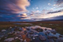 Roze zonsondergang over moerasland in een toneellandschap royalty-vrije stock fotografie