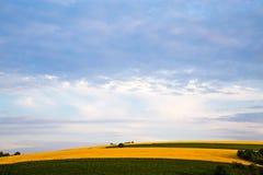 Roze zonsopgang of zonsondergang over tarwe of gerstgebieden royalty-vrije stock foto's