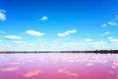 Roze zout meer in Westelijk Australië stock afbeeldingen