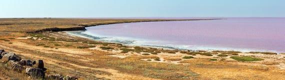Roze zout Syvash-Meer, de Oekraïne royalty-vrije stock afbeeldingen