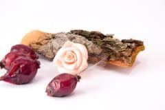 Rozebottels en rosa bloem Royalty-vrije Stock Afbeeldingen